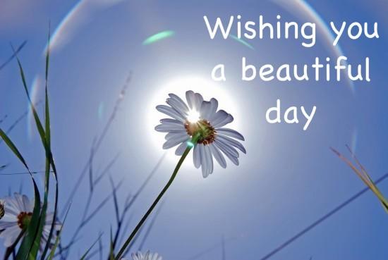 Good morning scraps good morning greetings good morning graphics wishes with good morning graphics good morning greetings good morning images good morning m4hsunfo