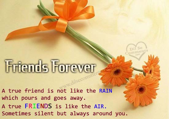 Best friends day scraps best friends day greetings best friends wishes with best friends day graphics best friends day greetings best friends day images m4hsunfo