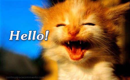 Hi & Hello Scraps, Hi & Hello Greetings, Hi & Hello ...